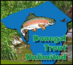 Donegal Trout Unlimited